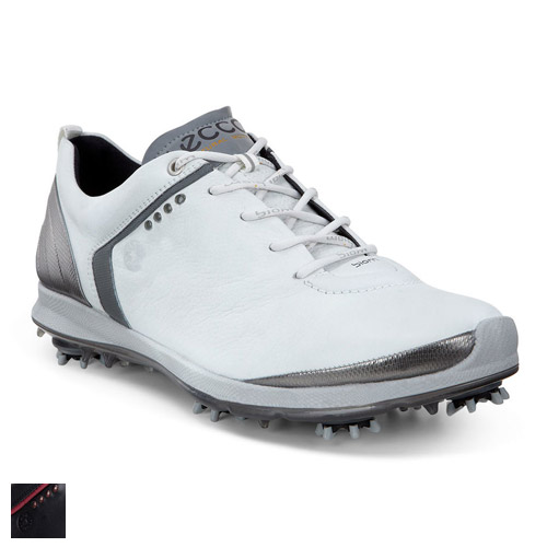 Ecco Biom G 2 GTX Shoes