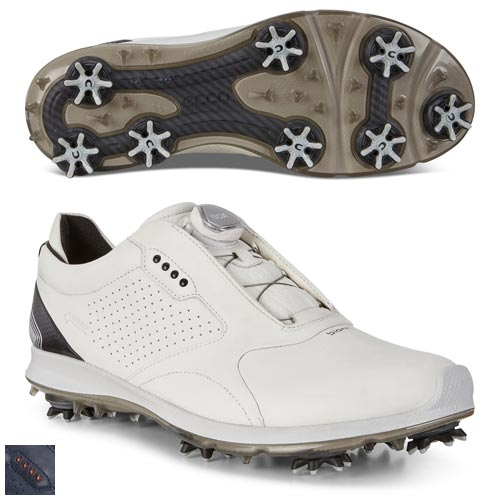 Ecco BIOM G 2 Boa GTX Shoes