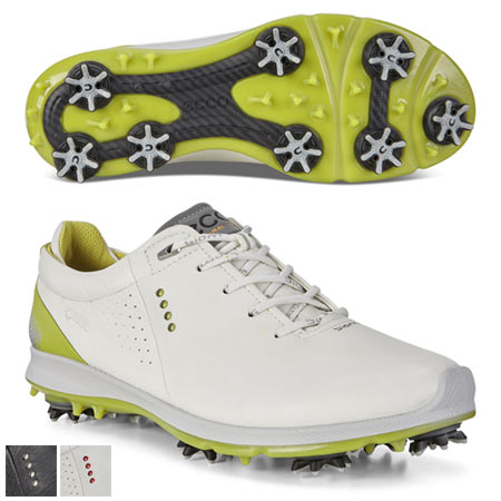 Ecco BIOM G 2 Free GTX Shoes