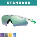 Oakley Standard Radar EV Path Sunglasses