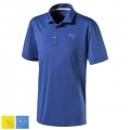 Puma Juniors Essential Pounce Golf Polo