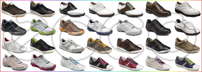 The 2012 ECCO Golf Shoes available at Fairway Golf - ecco Golf Street (Street Premiere, Street Luxe, Street Textile) golf shoes, ecco Biom golf shoes, ecco World Classic golf shoes, ecco Tour Classic golf shoes, ecco Cool III golf shoes